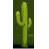 Saguaro Cactus-icon