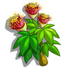 Eucalyptus Flower-icon