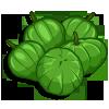 Tomatillo-icon