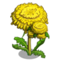 Dandelion Tree-icon