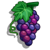 Grape-icon