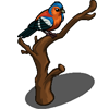 Chaffinch-icon