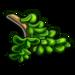Green Bonsai Cutting-icon