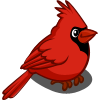 Red Cardinal-icon