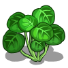 Image result for watercress icon