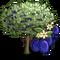 Damson Tree-icon