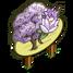Purple Magnolia Tree