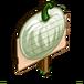 White Pumpkins (Crop)