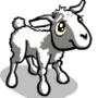 Yellowish White Lamb-icon