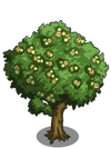 Chestnut Tree2-icon