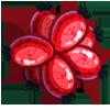 Flowering Dogwood-icon