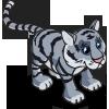 Maltese Tiger-icon