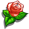 Pink Rose Candle-icon