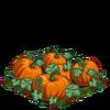 Pumpkin-super