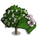 Southern Catalpa Tree-icon