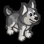 Husky Puppy Gray-icon