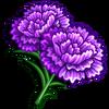 Purple Dianthus-icon