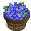 Blue Buttercup Bushel-icon