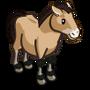 Asian Wild Horse-icon