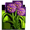 Floral Blush-icon