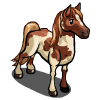 Spotted Mare-icon