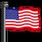 USA Flag-icon
