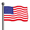 USA Flag-icon