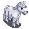 White Australian Pony-icon