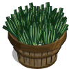 Green Onion Bushel-icon
