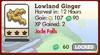 Lowland Ginger Market Info (June 2012)