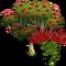 Ohia Tree-icon