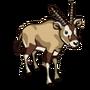 Oryx-icon
