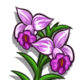 Bamboo Orchid-icon
