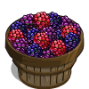 Dewberry Bushel-icon