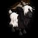 Dutch Landrace Goat-icon