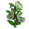 Pearl Sprouts-icon