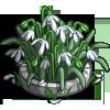 Snowdrop Flowerbed-icon