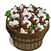 Australian Cotton Bushel-icon