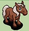 Braunes Pony-Fohlen-icon