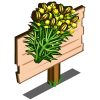 Cumin Mastery Sign-icon