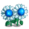 White Dwarf Sunflower-icon
