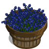 Bluebell Bushel-icon