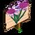 Lilac Daffy