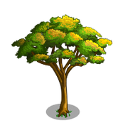 Savannah Acacia Tree-icon