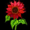 Velvet Queen Sunflower-icon