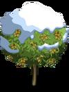 Almond Tree8-icon
