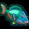 Rainbow Parrotfish-icon