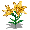 Yellow Crimson Lilies-icon