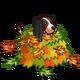 Autumn Playful Dog-icon