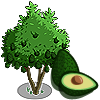 AvocadoTree-icon